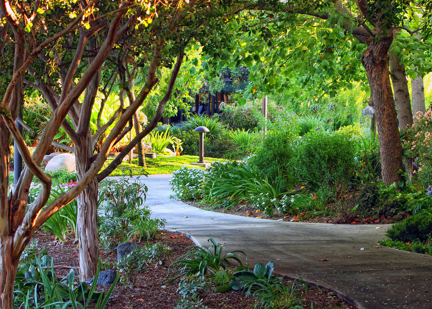 image - California Gardens Nursing Home
